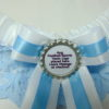 Baby Blue And White Lace Football Team Sports Bridal Wedding Garter